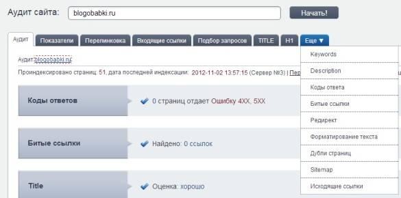 16 вкладок сервиса мегаиндекс аудит.