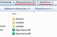 Установленный open server