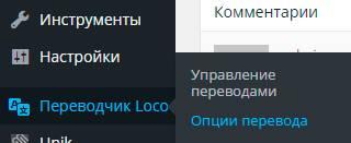 Пункт меню Переводчик Loco