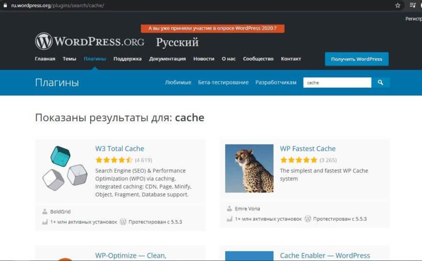 пример результата поиска по запросу cache