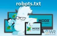 robots.txt для MODX Revo