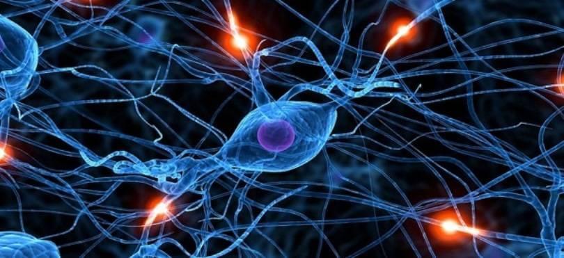 Важное практическое применение современных нейронных сетей