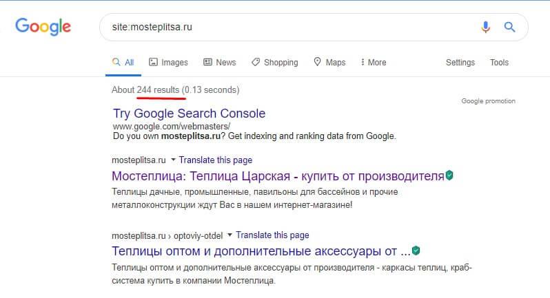 проверка индексации сайта в google