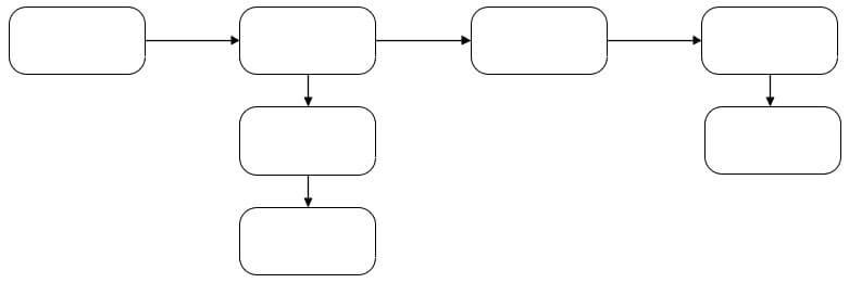 Линейно-разветвленная структура
